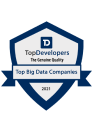 Top Big Data Companies 2021