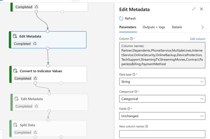 Settings For 'Edit Metadata' Asset